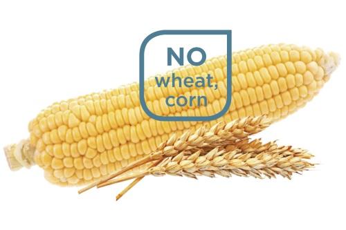 No wheat, no corn